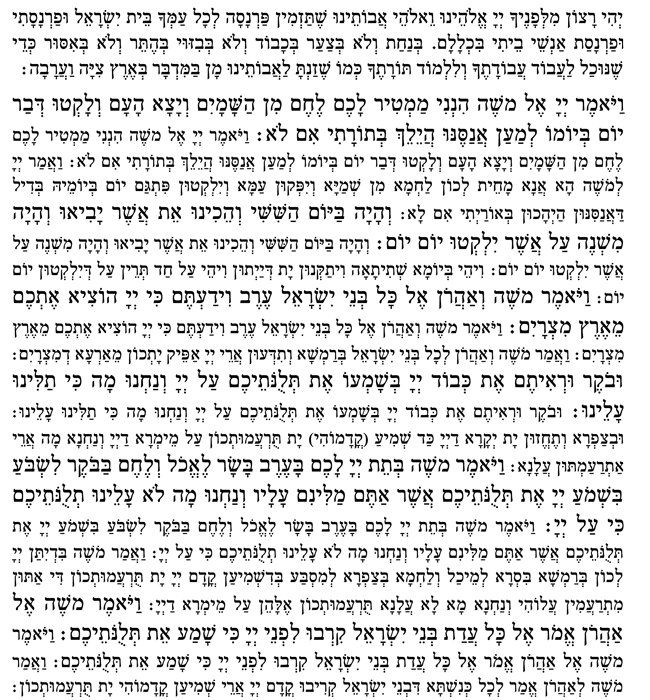 parshas haman text